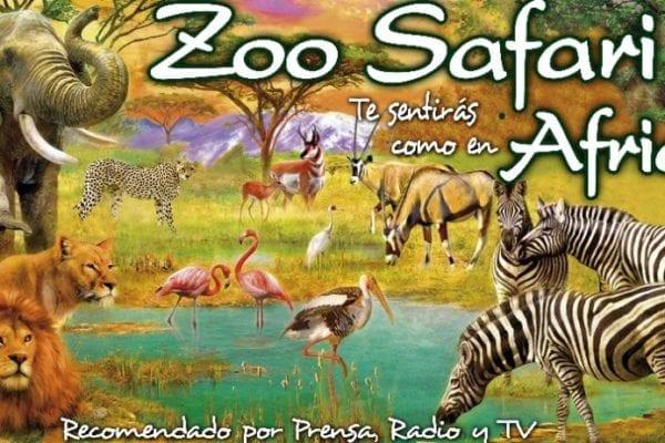 zoo-safari-fauna-aventura