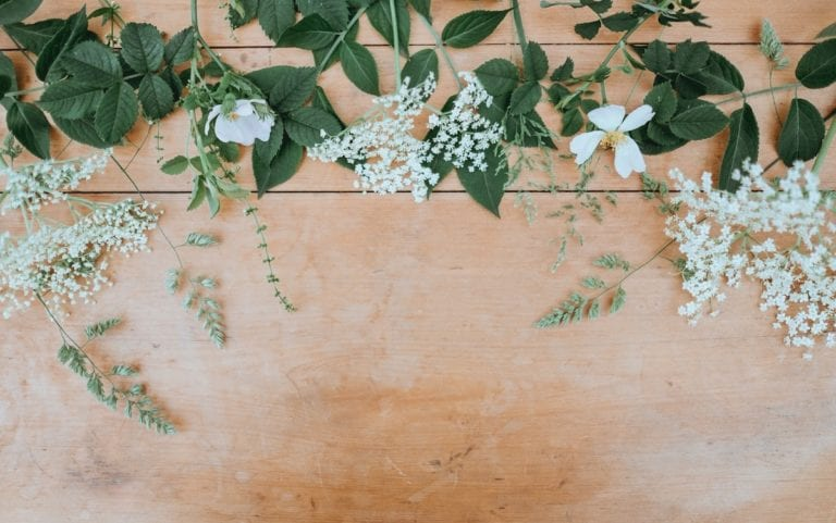 floristerias-bilbao